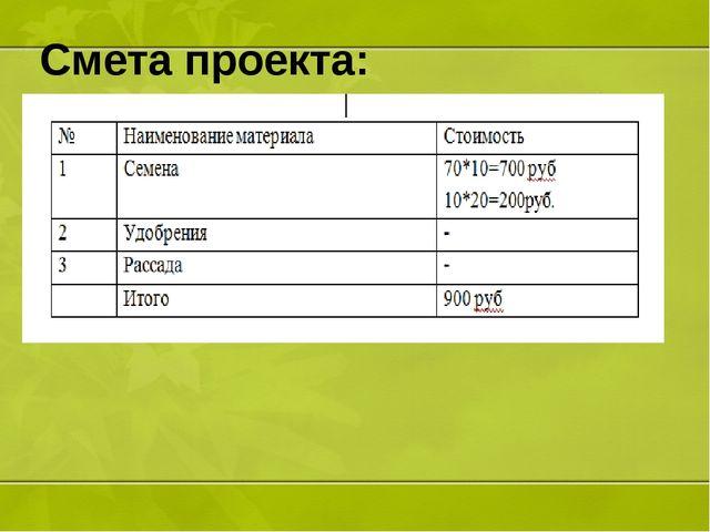 Смета проекта: