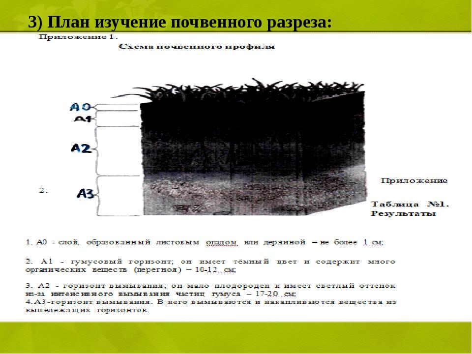 3) План изучение почвенного разреза: