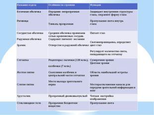 Название отдела Особенности строения Функции Белочная оболочка   Роговица П