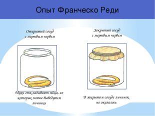 Открытый сосуд с мертвым червем Мухи откладывают яйца, из которых позже вывед