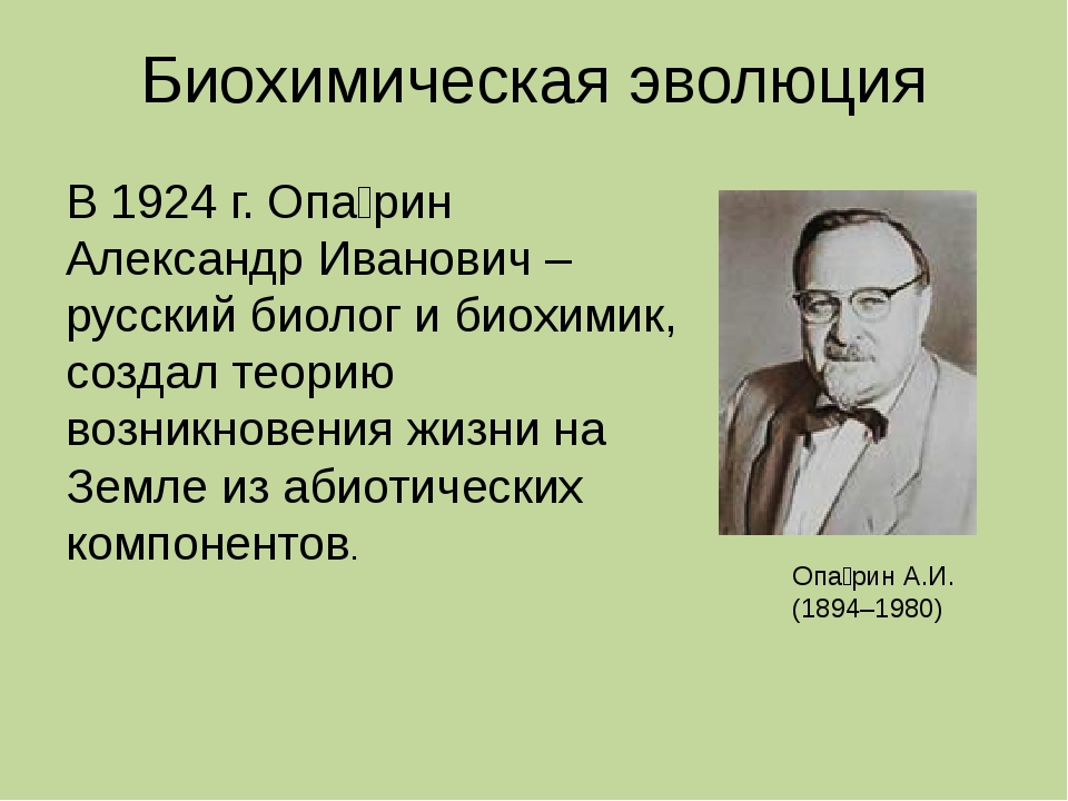 Биохимическая эволюция Опа́рин А.И. (1894–1980) В 1924 г. Опа́рин Александр И...