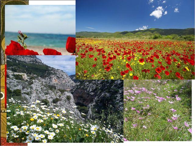 а Погода в Греции в мае похожа на июльскую в Москве: днём температура +19 +26...
