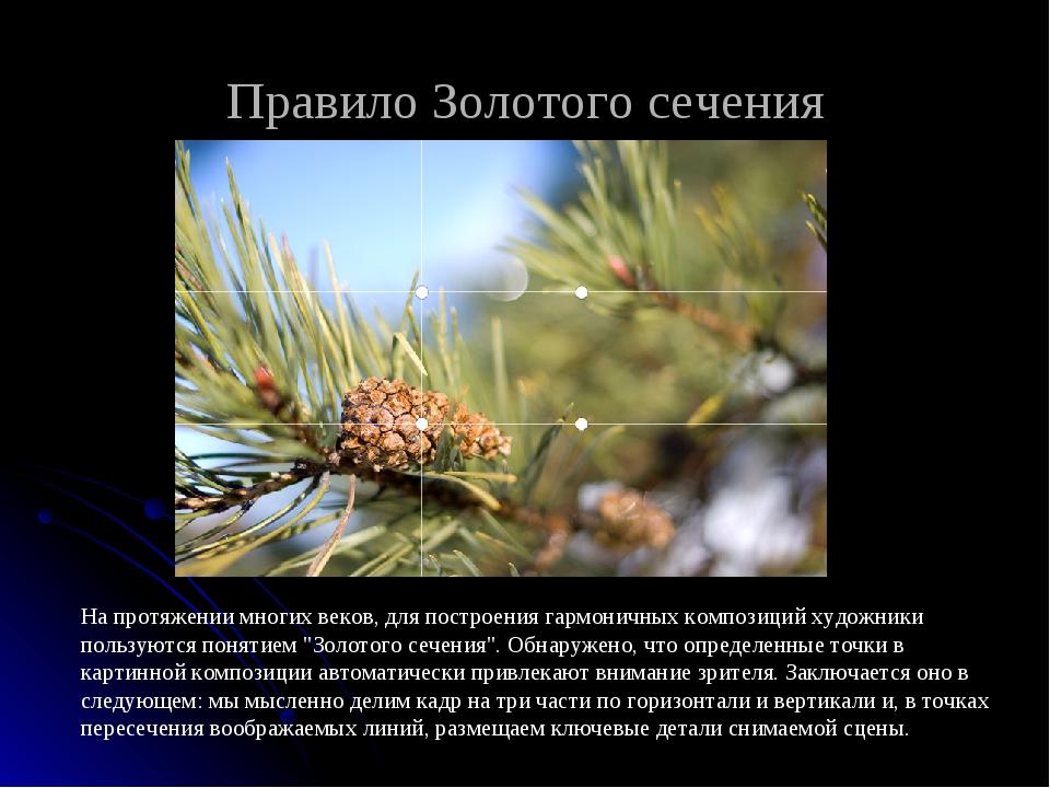 Правило Золотого сечения На протяжении многих веков, для построения гармоничн...