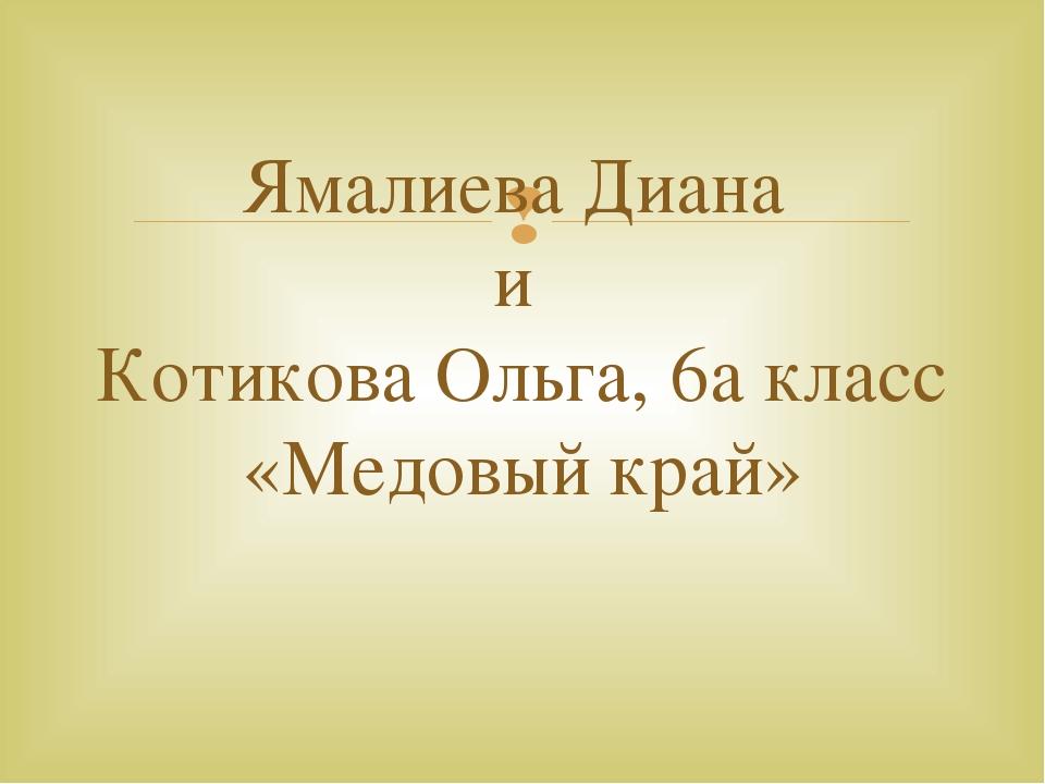Ямалиева Диана и Котикова Ольга, 6а класс «Медовый край» 