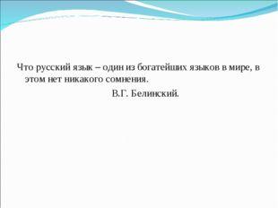 Что русский язык – один из богатейших языков в мире, в этом нет никакого сомн
