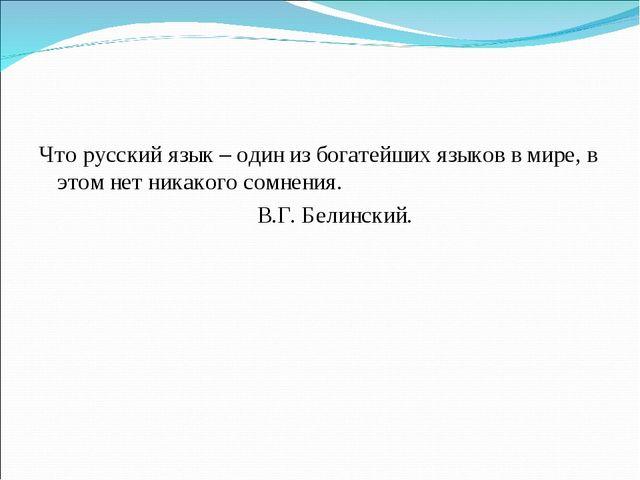 Что русский язык – один из богатейших языков в мире, в этом нет никакого сомн...