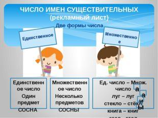 Две формы числа ЧИСЛО ИМЕН СУЩЕСТВИТЕЛЬНЫХ (рекламный лист) Единственное числ