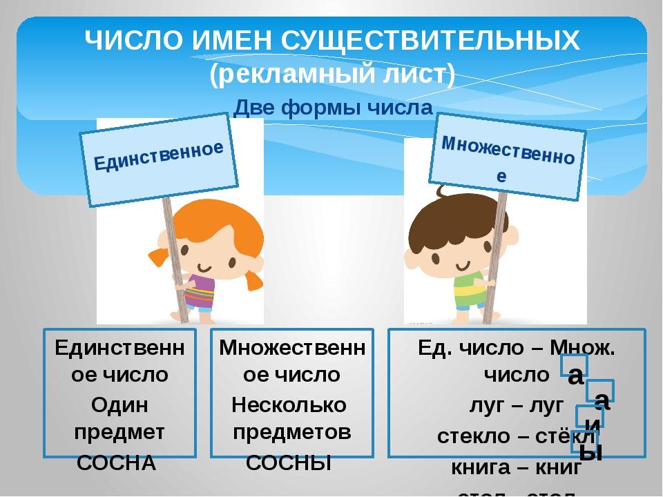 Две формы числа ЧИСЛО ИМЕН СУЩЕСТВИТЕЛЬНЫХ (рекламный лист) Единственное числ...