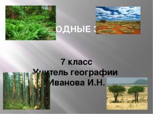 ПРИРОДНЫЕ ЗОНЫ 7 класс Учитель географии Иванова И.Н.