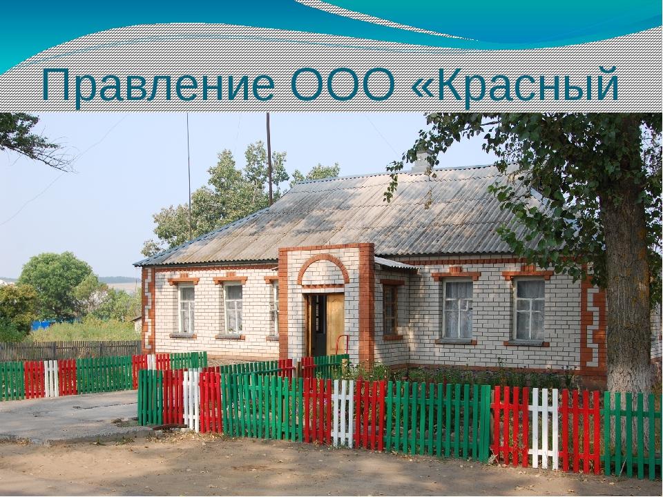 Правление ООО «Красный Дон»