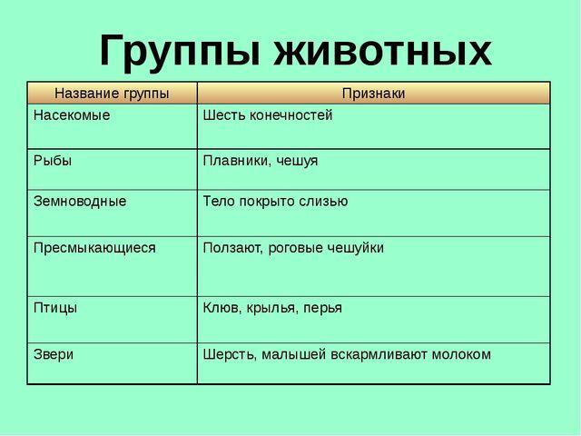 Группы животных Название группы Признаки Насекомые Шесть конечностей Рыбы Пла...