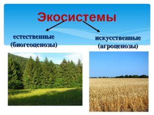 Экосистемы естественные (биогеоценозы) искусственные (агроценозы)