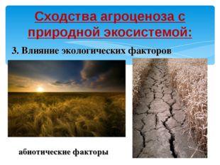 Сходства агроценоза с природной экосистемой: 3. Влияние экологических факторо