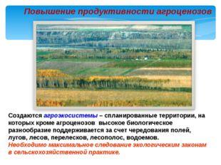 Повышение продуктивности агроценозов Создаются агроэкосистемы – спланированны