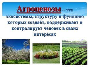 Агроценозы – это экосистемы, структуру и функцию которых создаёт, поддерживае