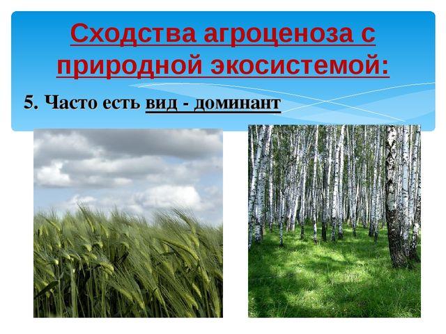 Сходства агроценоза с природной экосистемой: 5. Часто есть вид - доминант