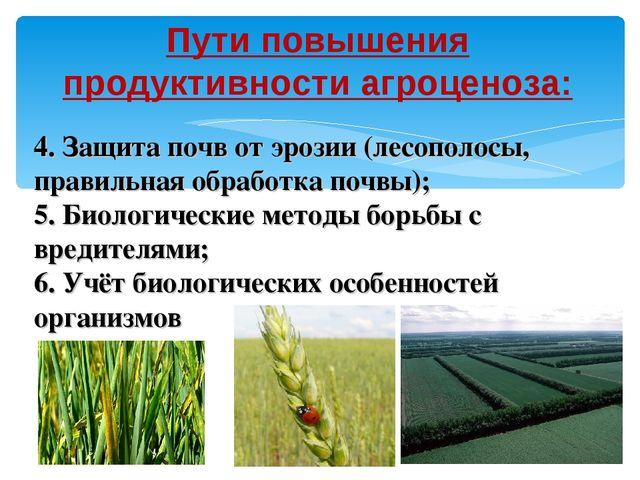 Пути повышения продуктивности агроценоза: 4. Защита почв от эрозии (лесополос...