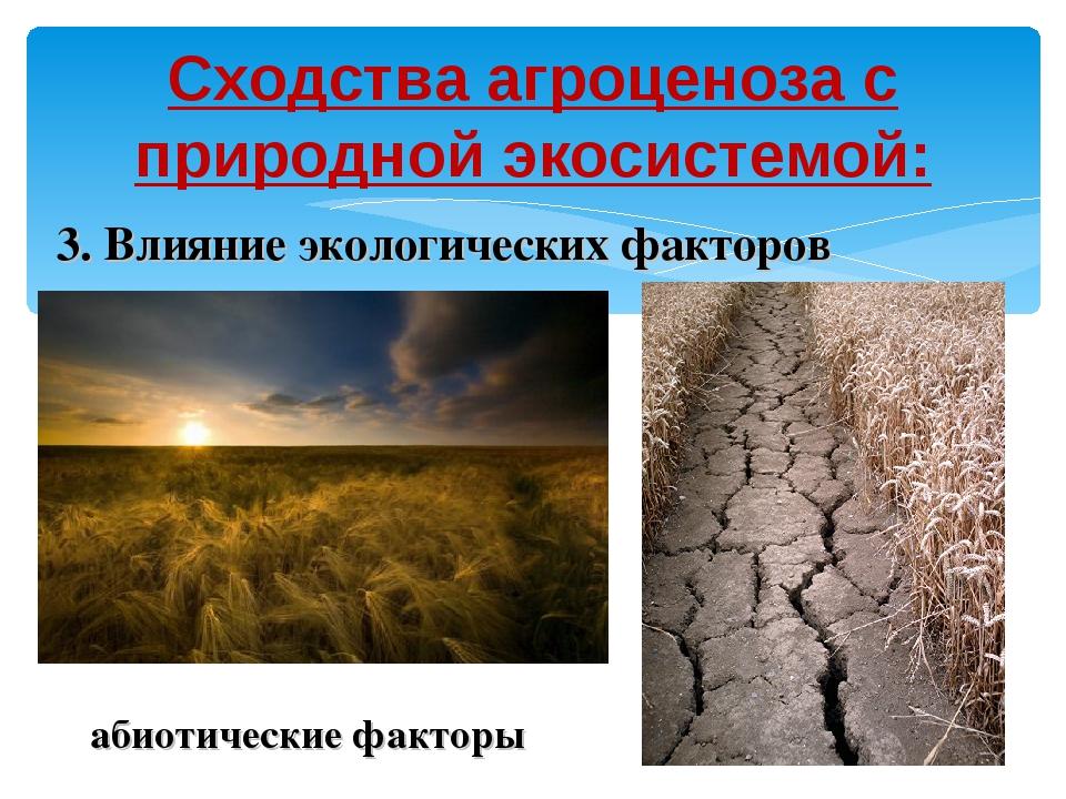 Сходства агроценоза с природной экосистемой: 3. Влияние экологических факторо...