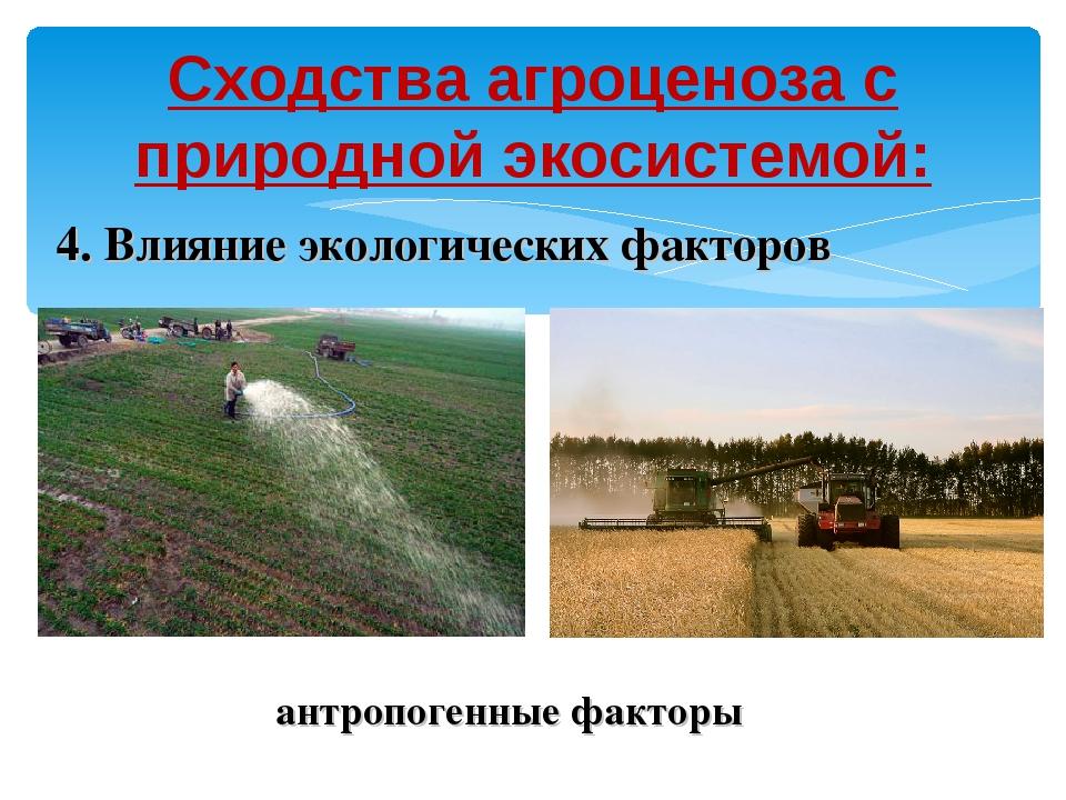 Сходства агроценоза с природной экосистемой: 4. Влияние экологических факторо...