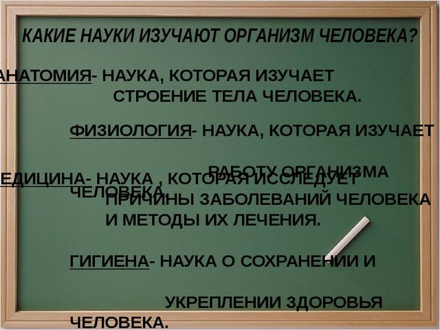 АНАТОМИЯ- НАУКА, КОТОРАЯ ИЗУЧАЕТ СТРОЕНИЕ ТЕЛА ЧЕЛОВЕКА. ФИЗИОЛОГИЯ- НАУКА, К...