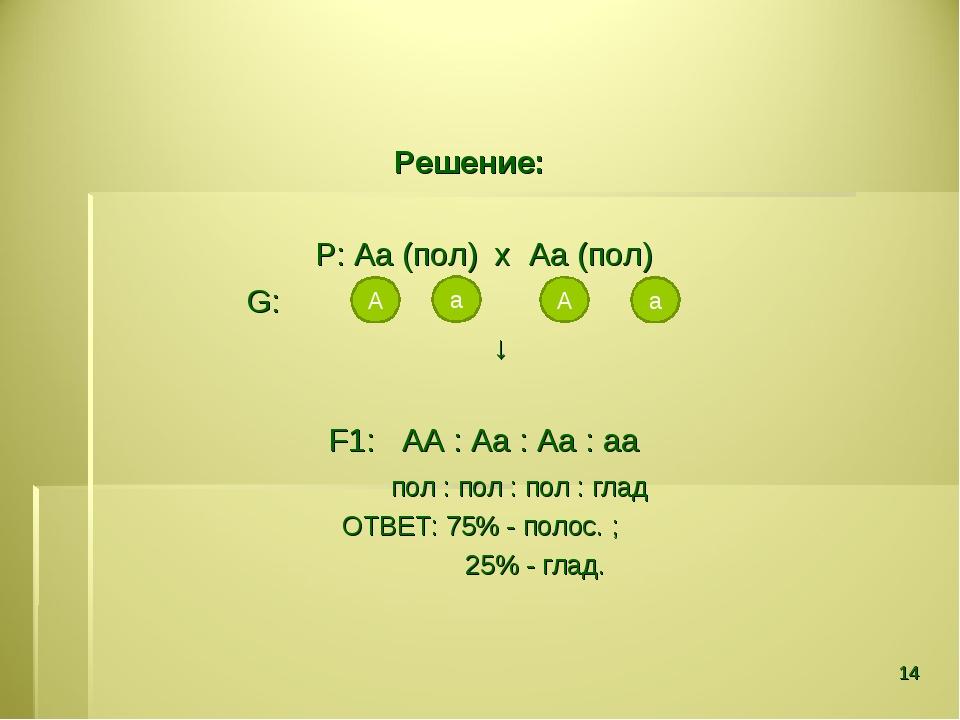 Решение: Р: Аа (пол) х Аа (пол) G: ↓ F1: АА : Аа : Аа : аа пол : пол : пол :...