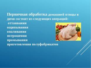 Первичная обработка домашней птицы и дичи состоит из следующих операций: отта