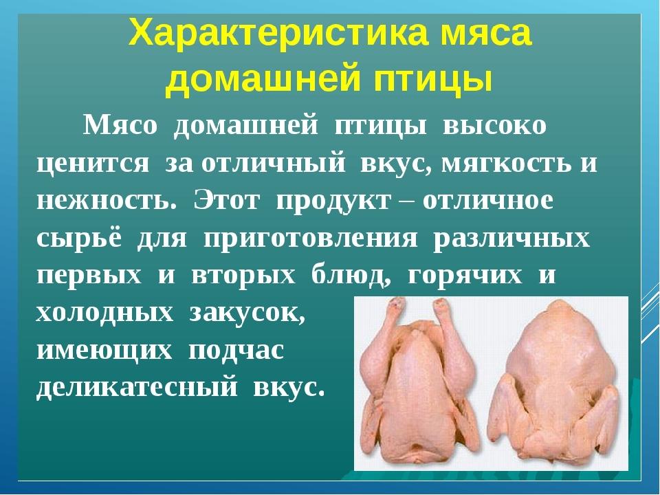 Свойства мяса кур