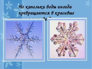 Но капельки воды иногда превращаются в красивые шестиугольные звездочки-снежи