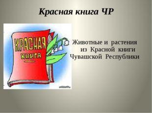 Красная книга ЧР Животные и растения из Красной книги Чувашской Республики