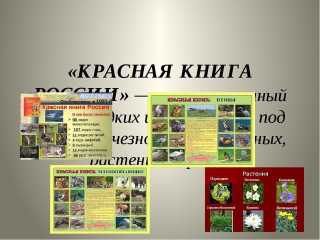 «КРАСНАЯ КНИГА РОССИИ»— аннотированный список редких и находящихся под угро...