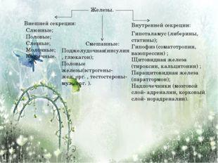 Железы. Внешней секреции: Внутренней секреции: Смешанные: Слюнные; Половые; С