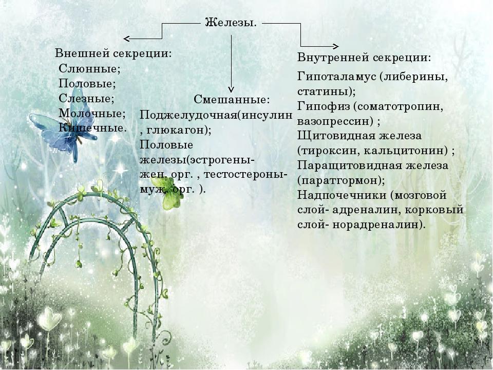 Железы. Внешней секреции: Внутренней секреции: Смешанные: Слюнные; Половые; С...