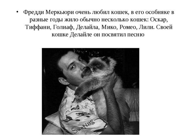 Фредди Меркьюри очень любил кошек, в его особняке в разные годы жило обычно н...