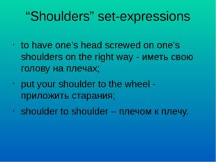 """""""Shoulders"""" set-expressions to have one's head screwed on one's shoulders on"""