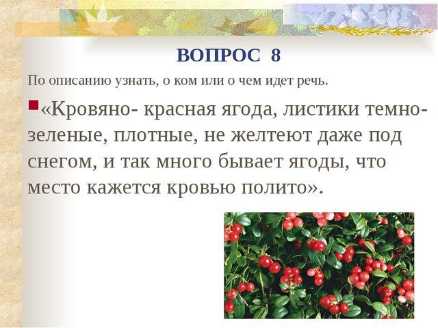 По описанию узнать, о ком или о чем идет речь. «Кровяно- красная ягода, листи...