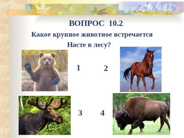 Какое крупное животное встречается Насте в лесу? ВОПРОС 10.2 1 4 3 2