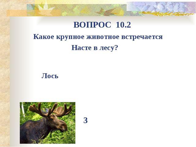 Какое крупное животное встречается Насте в лесу? ВОПРОС 10.2 3 Лось