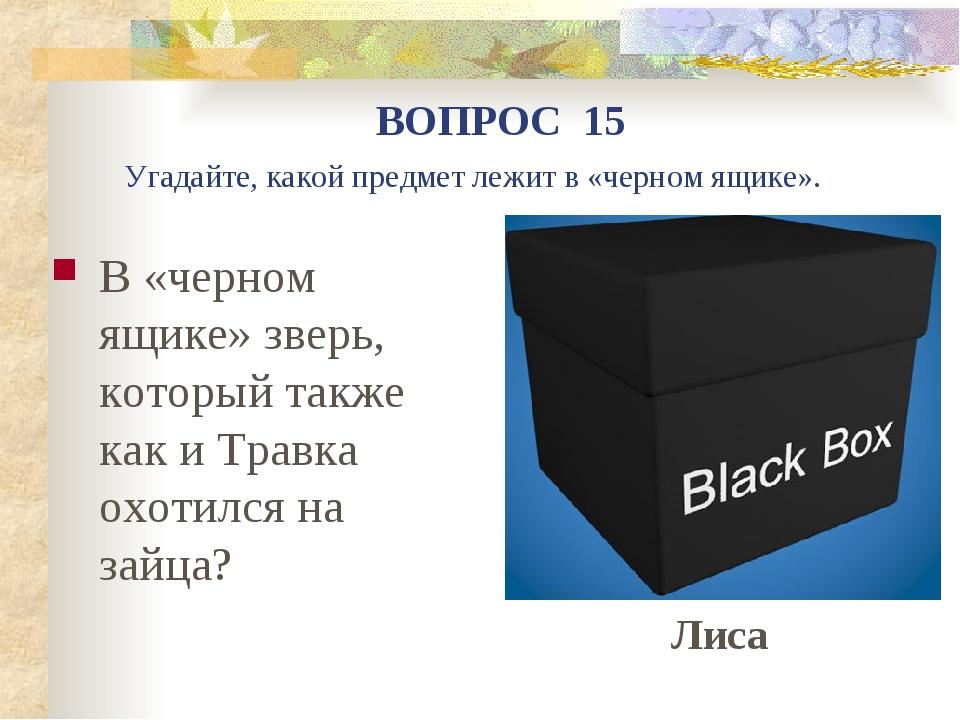 В «черном ящике» зверь, который также как и Травка охотился на зайца? ВОПРОС...
