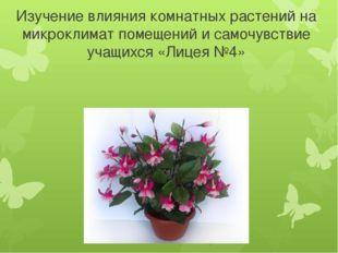 Изучение влияния комнатных растений на микроклимат помещений и самочувствие у