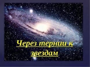 Через тернии к звездам {