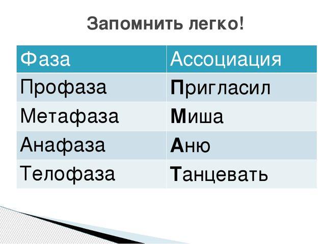 Запомнить легко! Фаза Ассоциация Профаза Пригласил Метафаза Миша Анафаза Аню...