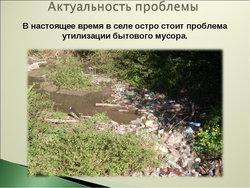 В настоящее время в селе остро стоит проблема утилизации бытового мусора.