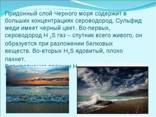 Придонный слой Черного моря содержит в больших концентрациях сероводород. Сул