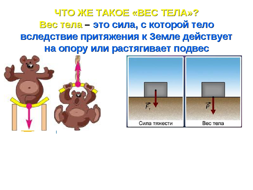 ЧТО ЖЕ ТАКОЕ «ВЕС ТЕЛА»? Вес тела – это сила, с которой тело вследствие притя...