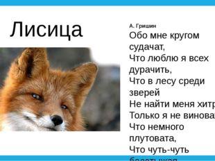 А. Гришин Обо мне кругом судачат, Что люблю я всех дурачить, Что в лесу среди