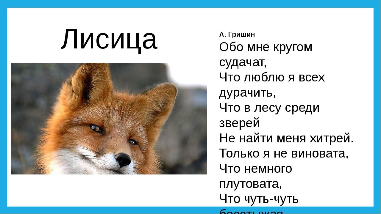 А. Гришин Обо мне кругом судачат, Что люблю я всех дурачить, Что в лесу среди...