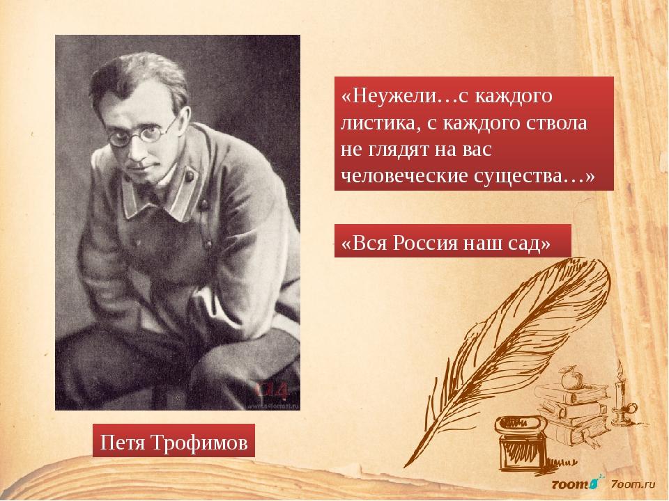 Петя Трофимов «Неужели…с каждого листика, с каждого ствола не глядят на вас ч...