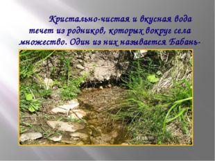 Кристально-чистая и вкусная вода течет из родников, которых вокруг села множ