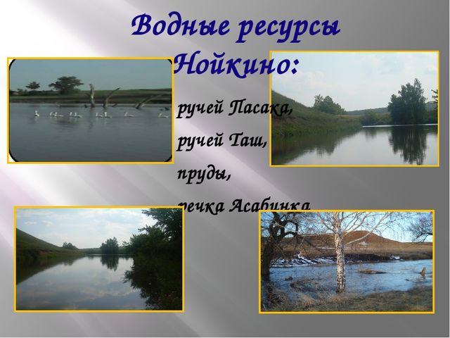 Водные ресурсы Нойкино: ручей Пасака, ручей Таш, пруды, речка Асабинка