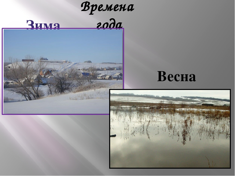 Зима Времена года Весна